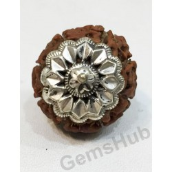 8 Mukhi Certified Indonesian Rudraksha Pendant With Silver (Chandi) Capping