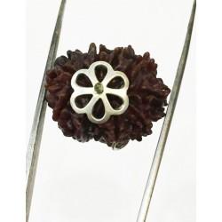 9 Mukhi Certified Rudraksha Silver Pendant (Nepal Origin)