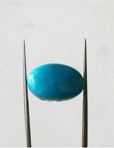14.25 ratti (12.73 ct) Natural Certified Feroza/Turquoise