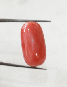 14.00 ratti (12.59 ct) Natural Certified Moonga/Coral